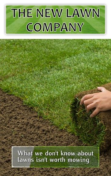 new lawn company
