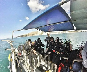 Oxford BSAC Scuba & Snorkel Diving Club