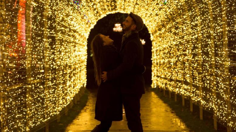 christmas lights at blenheim