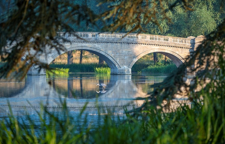 blenheim palace bladon bridge (1)